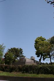 from aoyama 1.jpg